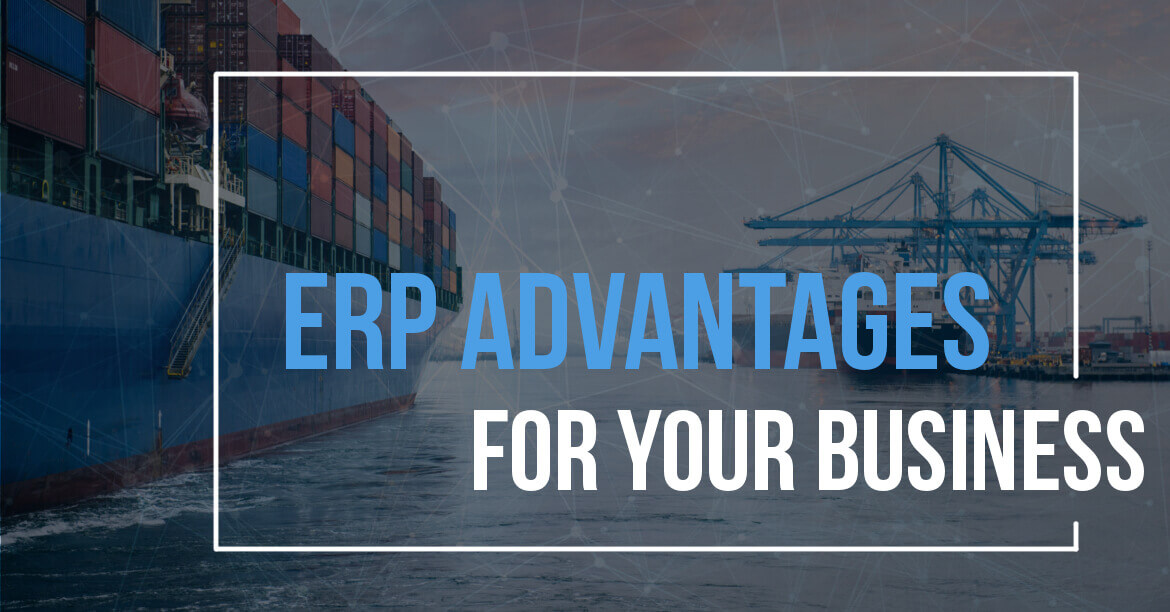 EPR Advantages for Your Business